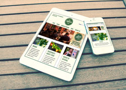 LimeKiln Cafe Responsive website